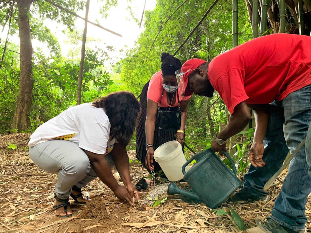 Give Back Ghana Tree Planting for Emancipation Day