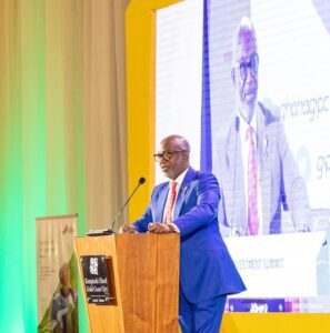 'Africa Will Be a Powerful Force for World Development' says Yofi Grant at Ghana Diaspora Investment Summit